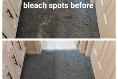 Expert Bleach Spot Repair