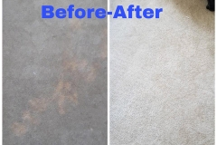 bleach spot repair before after