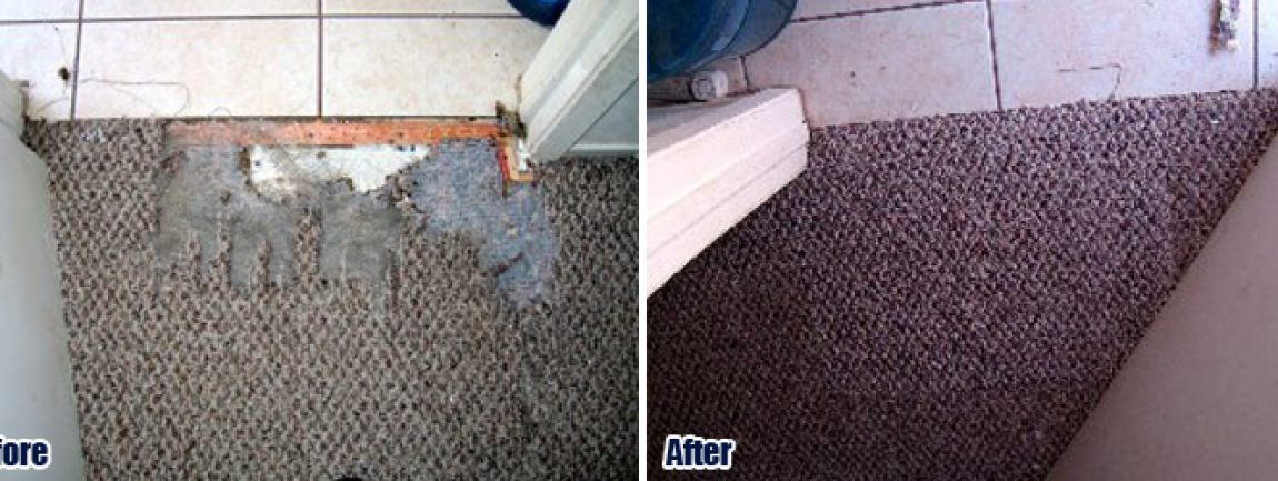 carpet repair banner main5  Carpet Repair Los Angeles CA. Service Area    888  837 0029 Revive Carpet Repair Experts REPAIR