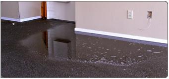Water Damaged-Carpet-Repair-Los Angeles CA
